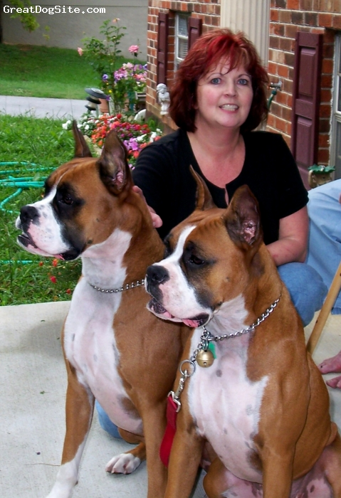Boxer, 4, fawn, Mom's babies :)