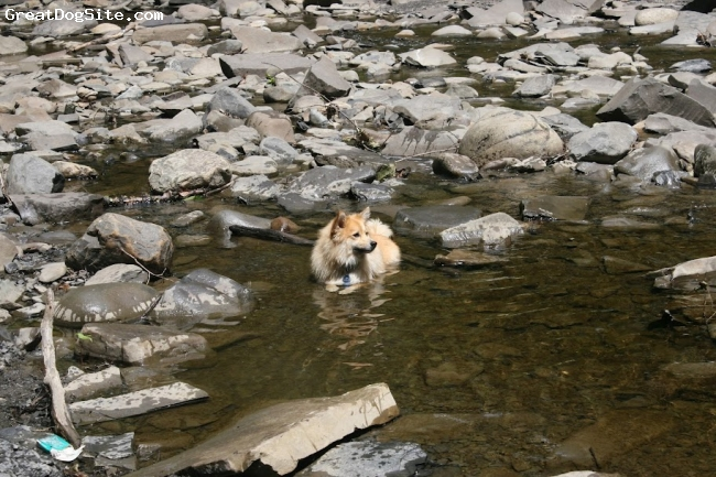 Eskland, 2, Blonde, Elda cooling off in the stream