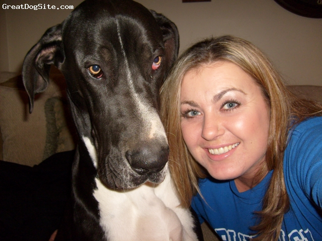 "Great Dane, 16 months, black and white, Me and my baby boy ""TANK"""