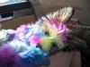Havallon, 4 months, rainbow