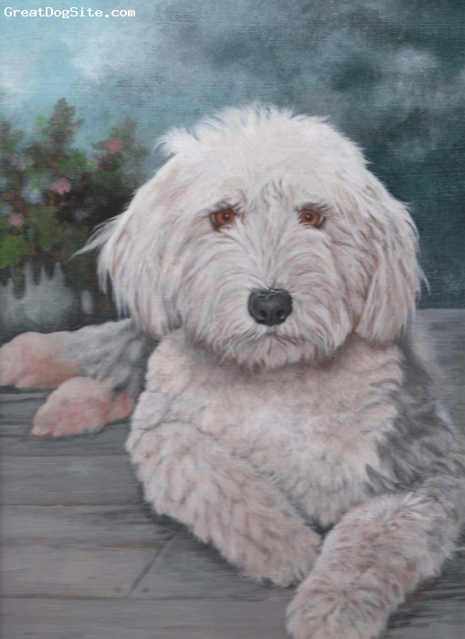 "Old English Sheepdog, 2, grizzle, Painting of our ""chloe"""