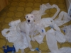 Parson Russell Terrier, 2 Years Old, All White w/ Black Spots