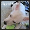 Peka-A-West, 4 mths, white