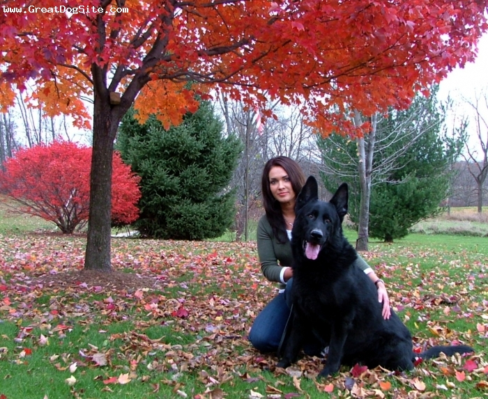 German Shepherd, 7 yr old, Black, This is Ty taken in Nov 2007 with my daughter Autumn. Ty was one of our puppies out of our E.German solid balck female Sissi von Grafental and Vax vom Edelwald a SchH3 Import blk/red male. Ty is one of our stud dogs. Can be seen on our website at